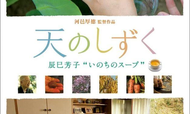 「天のしずく- 料理家 辰巳芳子の物語」(河邑厚徳 作品)を観て、サイトも作って思ったこと